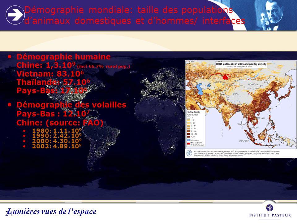 24 Démographie mondiale: taille des populations danimaux domestiques et dhommes/ interfaces Démographie humaine Chine: 1,3.10 9 (incl 66.7% rural pop.) Vietnam: 83.10 6 Thaïlande: 57.10 6 Pays-Bas: 17.10 6 Démographie des volailles Pays-Bas : 12.10 7 Chine: (source: FAO) 1980: 1.11 * 10 9 1990: 2.42 * 10 9 2000: 4.30 * 10 9 2002: 4.89 * 10 9 Lumières vues de lespace