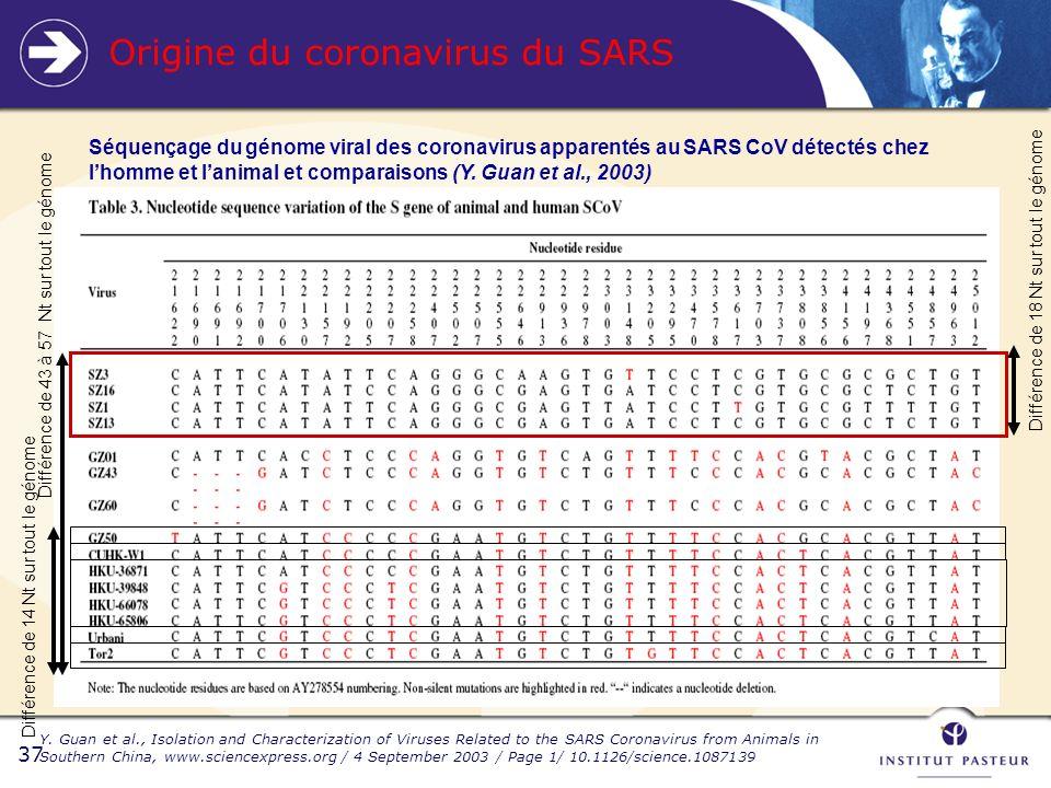 37 Origine du coronavirus du SARS Différence de 14 Nt sur tout le génome Différence de 43 à 57 Nt sur tout le génome Différence de 18 Nt sur tout le génome Séquençage du génome viral des coronavirus apparentés au SARS CoV détectés chez lhomme et lanimal et comparaisons (Y.