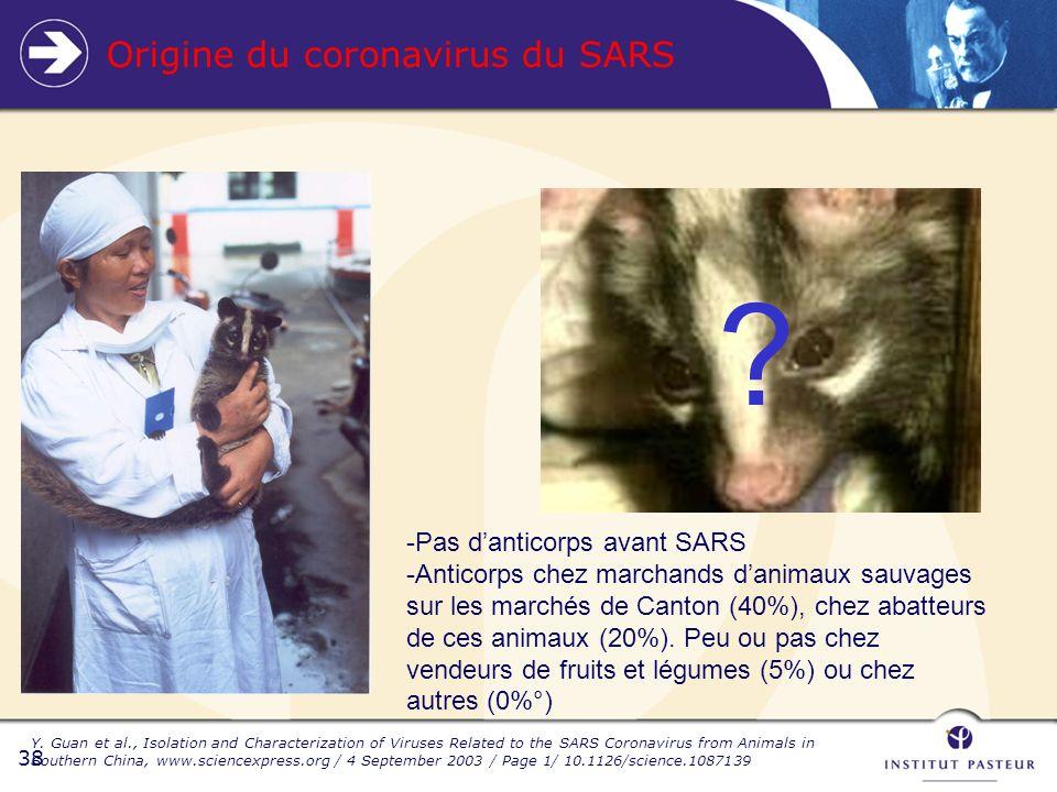 38 ? -Pas danticorps avant SARS -Anticorps chez marchands danimaux sauvages sur les marchés de Canton (40%), chez abatteurs de ces animaux (20%). Peu