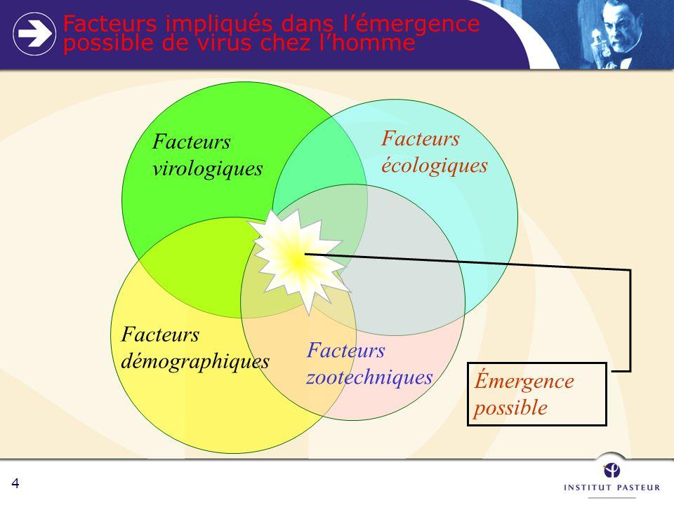 4 Facteurs virologiques Facteurs écologiques Facteurs zootechniques Facteurs démographiques Émergence possible Facteurs impliqués dans lémergence possible de virus chez lhomme