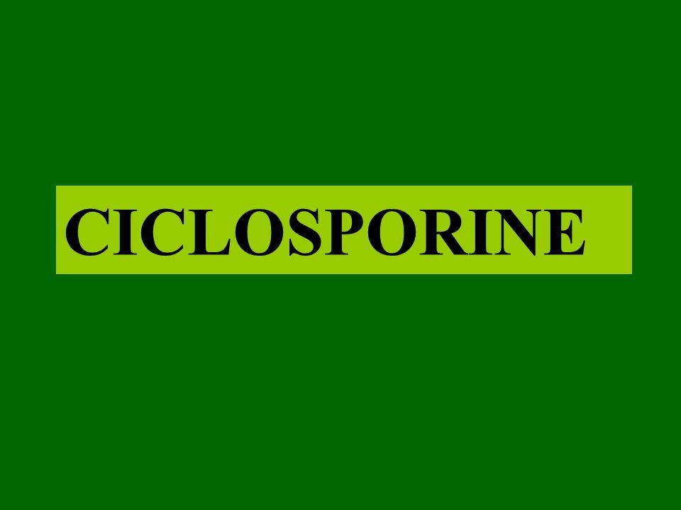 CICLOSPORINE
