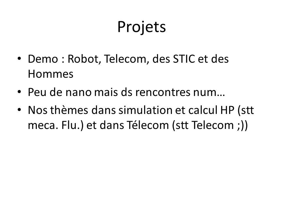 Projets Demo : Robot, Telecom, des STIC et des Hommes Peu de nano mais ds rencontres num… Nos thèmes dans simulation et calcul HP (stt meca. Flu.) et