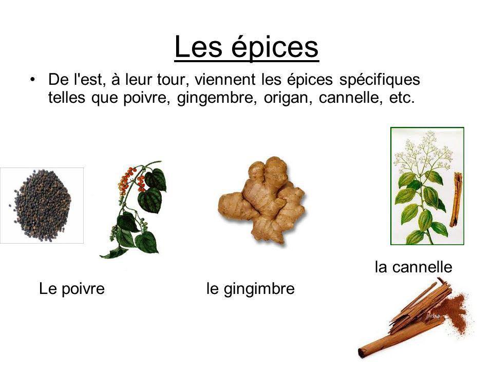 Les épices De l'est, à leur tour, viennent les épices spécifiques telles que poivre, gingembre, origan, cannelle, etc. la cannelle Le poivre le gingim