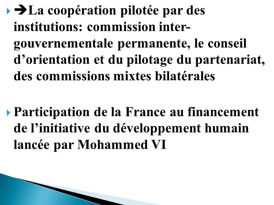 La coopération pilotée par des institutions: commission inter- gouvernementale permanente, le conseil dorientation et du pilotage du partenariat, des