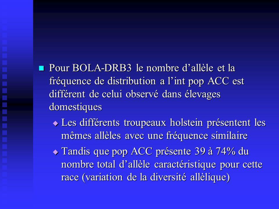 Pour BOLA-DRB3 le nombre dallèle et la fréquence de distribution a lint pop ACC est différent de celui observé dans élevages domestiques Pour BOLA-DRB3 le nombre dallèle et la fréquence de distribution a lint pop ACC est différent de celui observé dans élevages domestiques Les différents troupeaux holstein présentent les mêmes allèles avec une fréquence similaire Les différents troupeaux holstein présentent les mêmes allèles avec une fréquence similaire Tandis que pop ACC présente 39 à 74% du nombre total dallèle caractéristique pour cette race (variation de la diversité allèlique) Tandis que pop ACC présente 39 à 74% du nombre total dallèle caractéristique pour cette race (variation de la diversité allèlique)