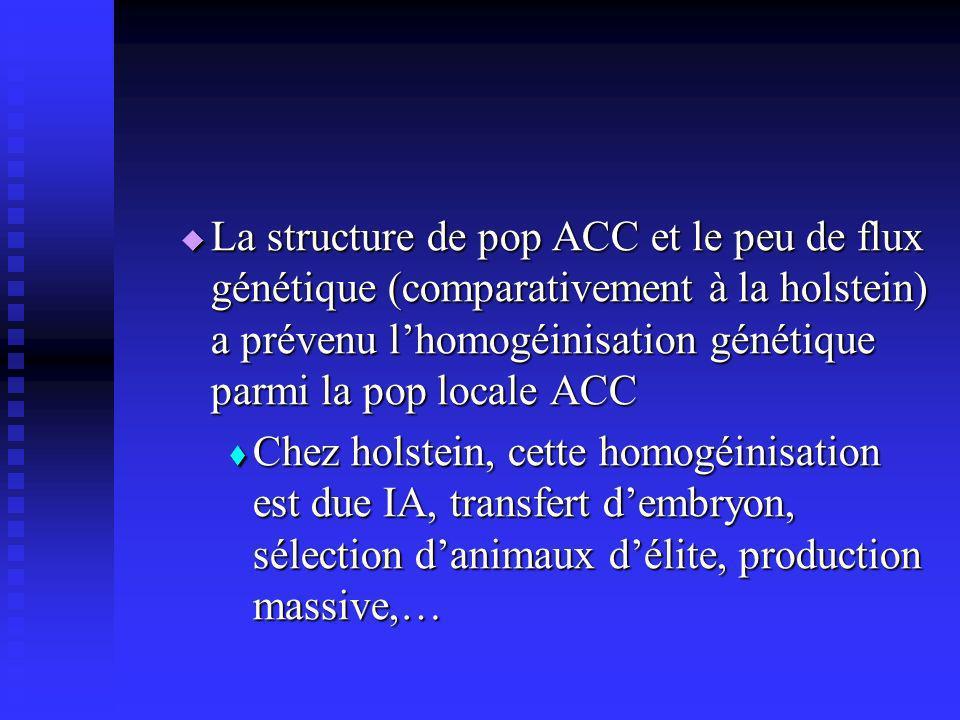 La structure de pop ACC et le peu de flux génétique (comparativement à la holstein) a prévenu lhomogéinisation génétique parmi la pop locale ACC La structure de pop ACC et le peu de flux génétique (comparativement à la holstein) a prévenu lhomogéinisation génétique parmi la pop locale ACC Chez holstein, cette homogéinisation est due IA, transfert dembryon, sélection danimaux délite, production massive,… Chez holstein, cette homogéinisation est due IA, transfert dembryon, sélection danimaux délite, production massive,…