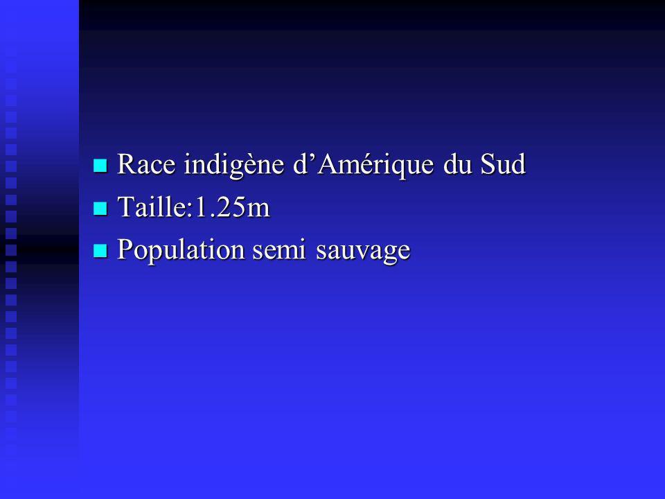 Race indigène dAmérique du Sud Race indigène dAmérique du Sud Taille:1.25m Taille:1.25m Population semi sauvage Population semi sauvage