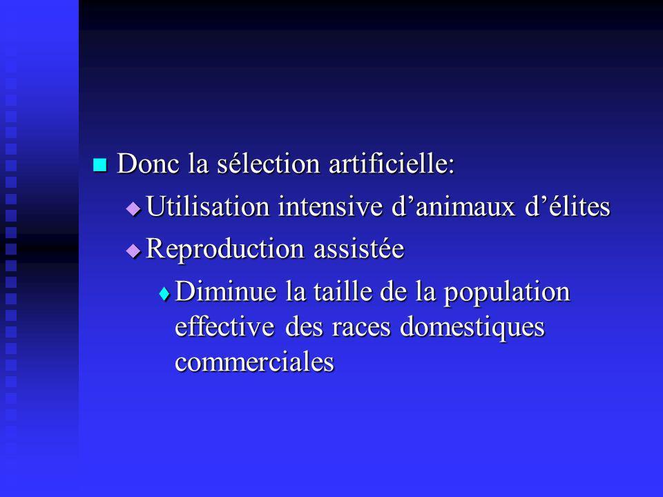 Donc la sélection artificielle: Donc la sélection artificielle: Utilisation intensive danimaux délites Utilisation intensive danimaux délites Reproduc