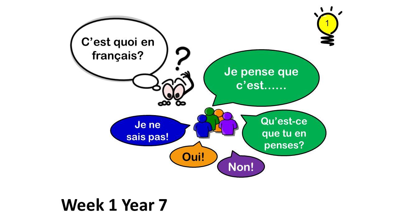 Je pense que cest…… Cest quoi en français? Quest-ce que tu en penses? Je ne sais pas! Oui! Non! Week 1 Year 7 1