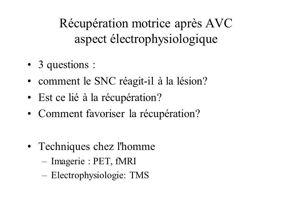 Récupération motrice après AVC aspect électrophysiologique 3 questions : comment le SNC réagit-il à la lésion? Est ce lié à la récupération? Comment f