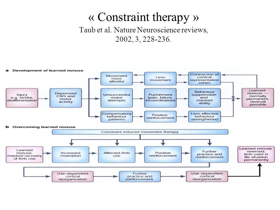 « Constraint therapy » Taub et al. Nature Neuroscience reviews, 2002, 3, 228-236.