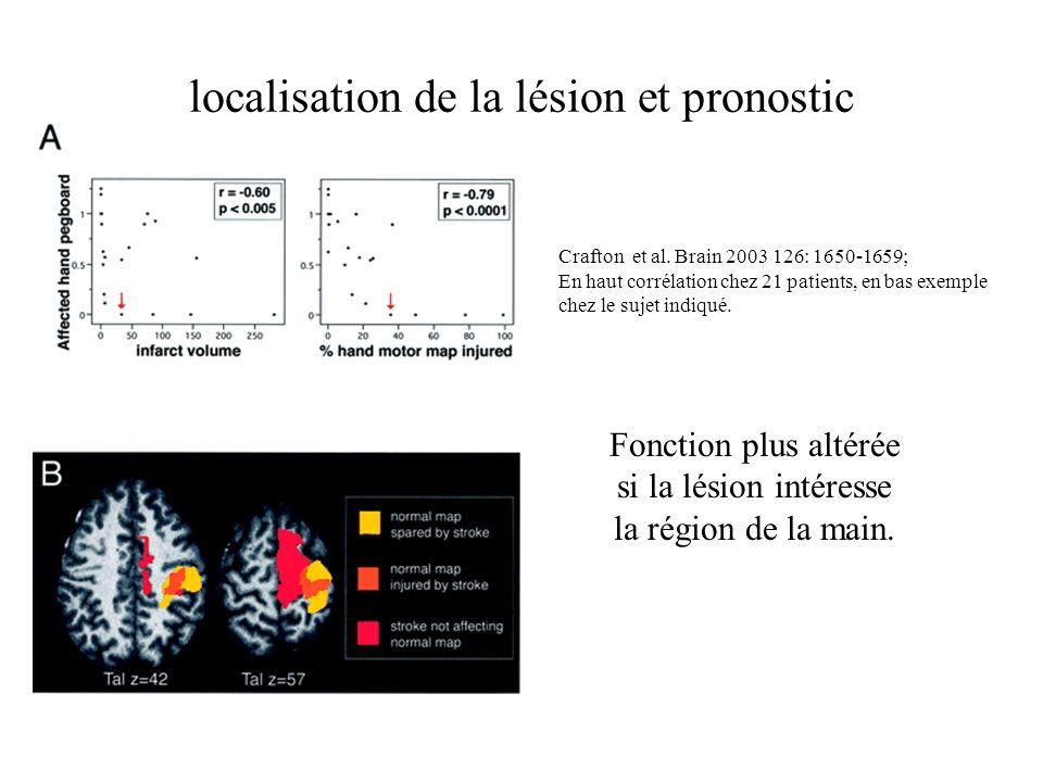 localisation de la lésion et pronostic Fonction plus altérée si la lésion intéresse la région de la main. Crafton et al. Brain 2003 126: 1650-1659; En