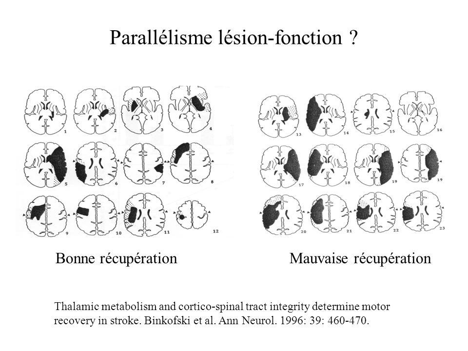 « Constraint therapy » Taub et al. Nature Neuroscience reviews, 2002, 3, 228-236.