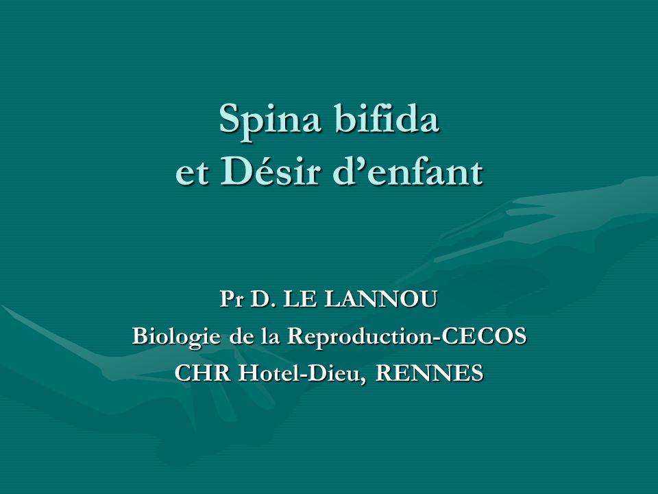 Spina bifida et Désir denfant Pr D. LE LANNOU Biologie de la Reproduction-CECOS CHR Hotel-Dieu, RENNES