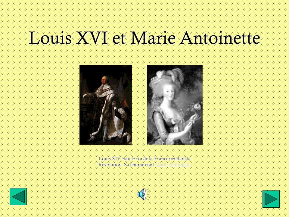 Louis XVI et Marie Antoinette Louis XIV était le roi de la France pendant la Révolution.