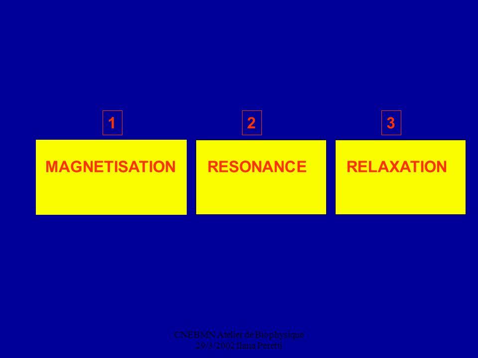 CNEBMN Atelier de Biophysique 29/3/2002 Ilana Peretti 1 MAGNETISATIONRESONANCE 2 RELAXATION 3
