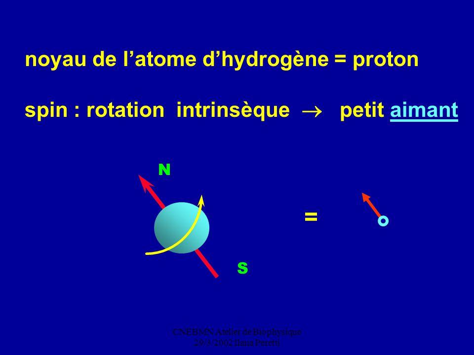 CNEBMN Atelier de Biophysique 29/3/2002 Ilana Peretti noyau de latome dhydrogène = proton spin : rotation intrinsèque petit aimant N S =
