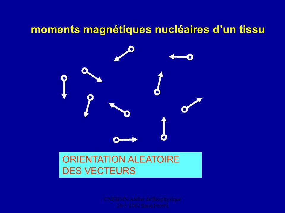 CNEBMN Atelier de Biophysique 29/3/2002 Ilana Peretti moments magnétiques nucléaires dun tissu ORIENTATION ALEATOIRE DES VECTEURS