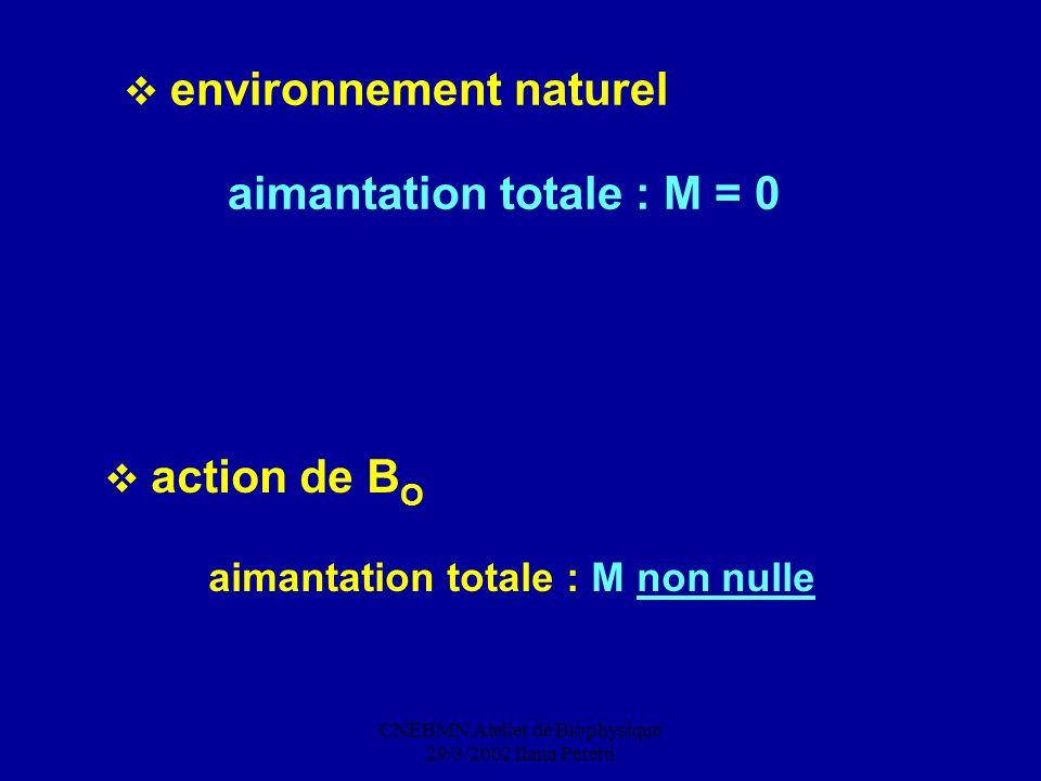 CNEBMN Atelier de Biophysique 29/3/2002 Ilana Peretti action de B O aimantation totale : M non nulle environnement naturel aimantation totale : M = 0