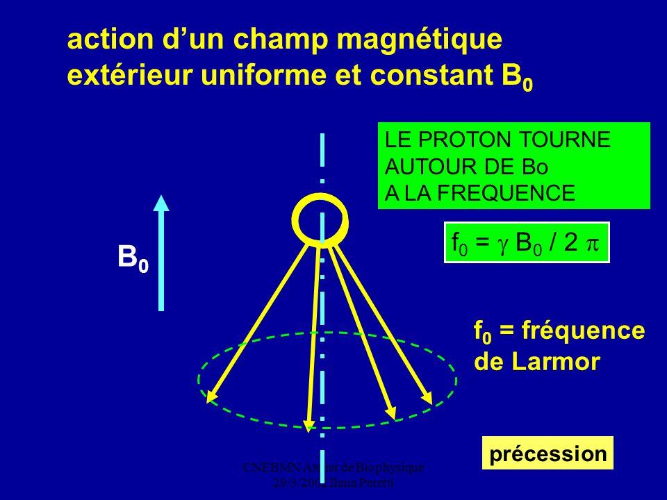 CNEBMN Atelier de Biophysique 29/3/2002 Ilana Peretti action dun champ magnétique extérieur uniforme et constant B 0 LE PROTON TOURNE AUTOUR DE Bo A L