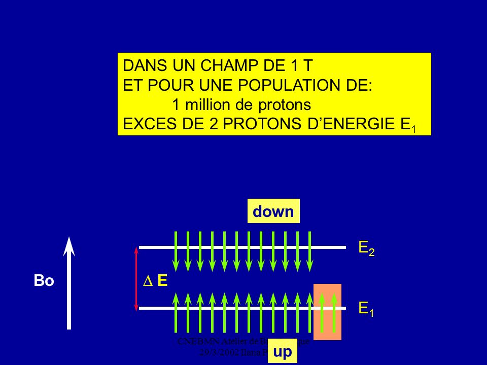 CNEBMN Atelier de Biophysique 29/3/2002 Ilana Peretti DANS UN CHAMP DE 1 T ET POUR UNE POPULATION DE: 1 million de protons EXCES DE 2 PROTONS DENERGIE