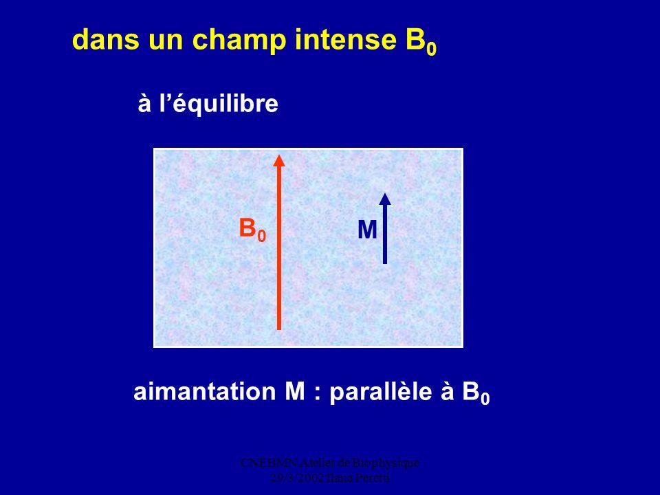 CNEBMN Atelier de Biophysique 29/3/2002 Ilana Peretti dans un champ intense B 0 à léquilibre B0B0 M aimantation M : parallèle à B 0