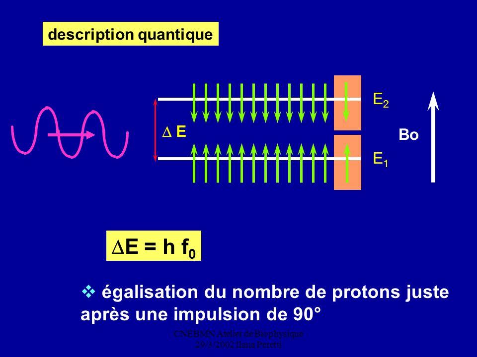 CNEBMN Atelier de Biophysique 29/3/2002 Ilana Peretti description quantique Bo E2E2 E1E1 E E = h f 0 égalisation du nombre de protons juste après une