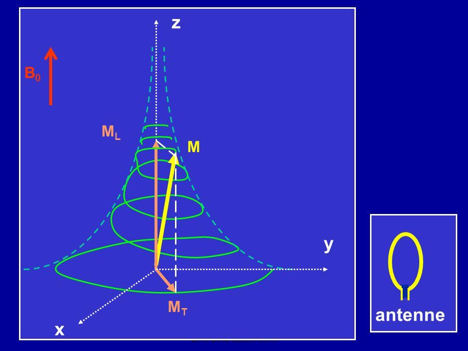 CNEBMN Atelier de Biophysique 29/3/2002 Ilana Peretti z antenne x MTMT y M MLML B0B0