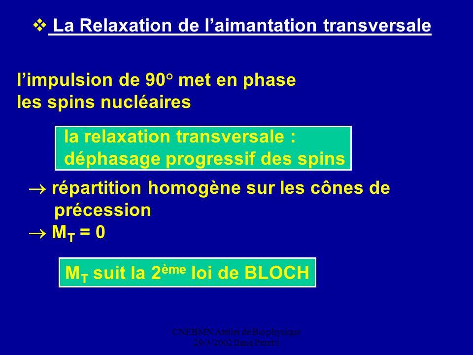 CNEBMN Atelier de Biophysique 29/3/2002 Ilana Peretti M T suit la 2 ème loi de BLOCH La Relaxation de laimantation transversale limpulsion de 90° met