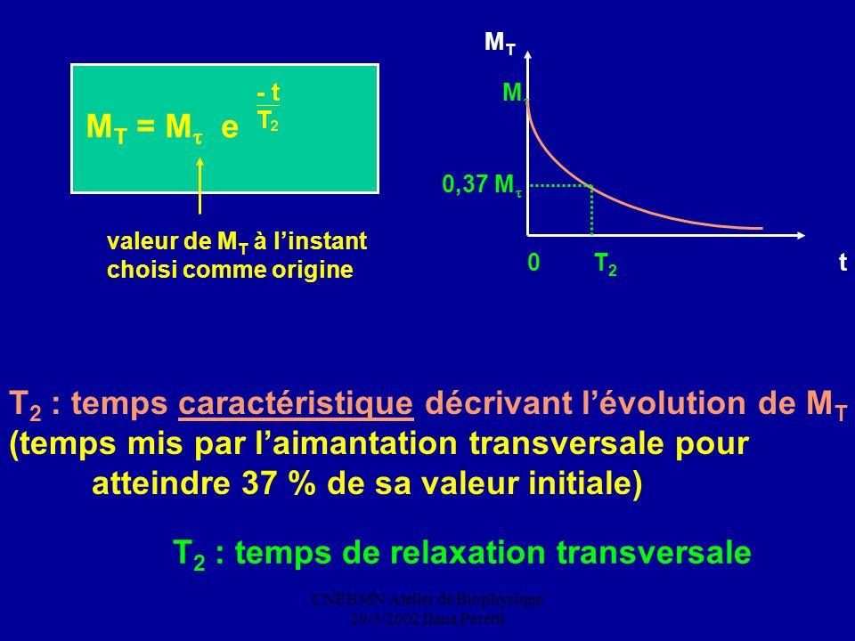 CNEBMN Atelier de Biophysique 29/3/2002 Ilana Peretti M T = M e valeur de M T à linstant choisi comme origine T 2 : temps de relaxation transversale T