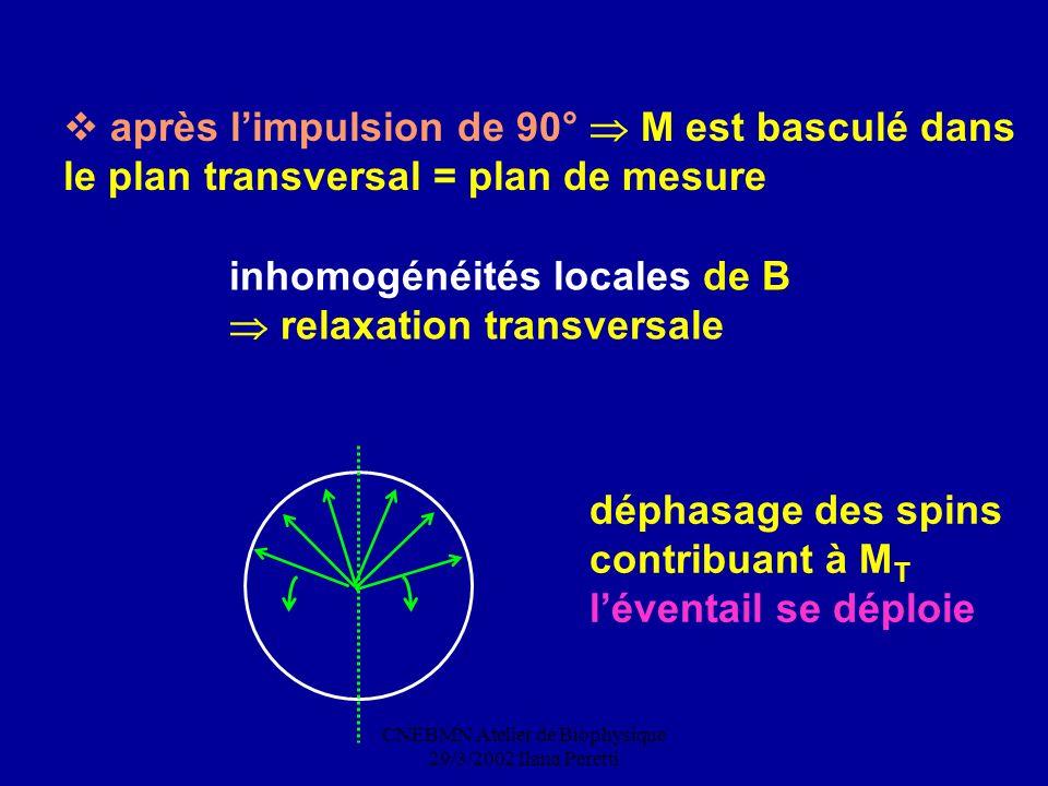 CNEBMN Atelier de Biophysique 29/3/2002 Ilana Peretti après limpulsion de 90° M est basculé dans le plan transversal = plan de mesure inhomogénéités l