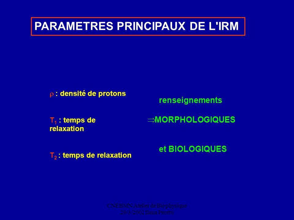 CNEBMN Atelier de Biophysique 29/3/2002 Ilana Peretti PARAMETRES PRINCIPAUX DE L'IRM : densité de protons T 1 : temps de relaxation T 2 : temps de rel