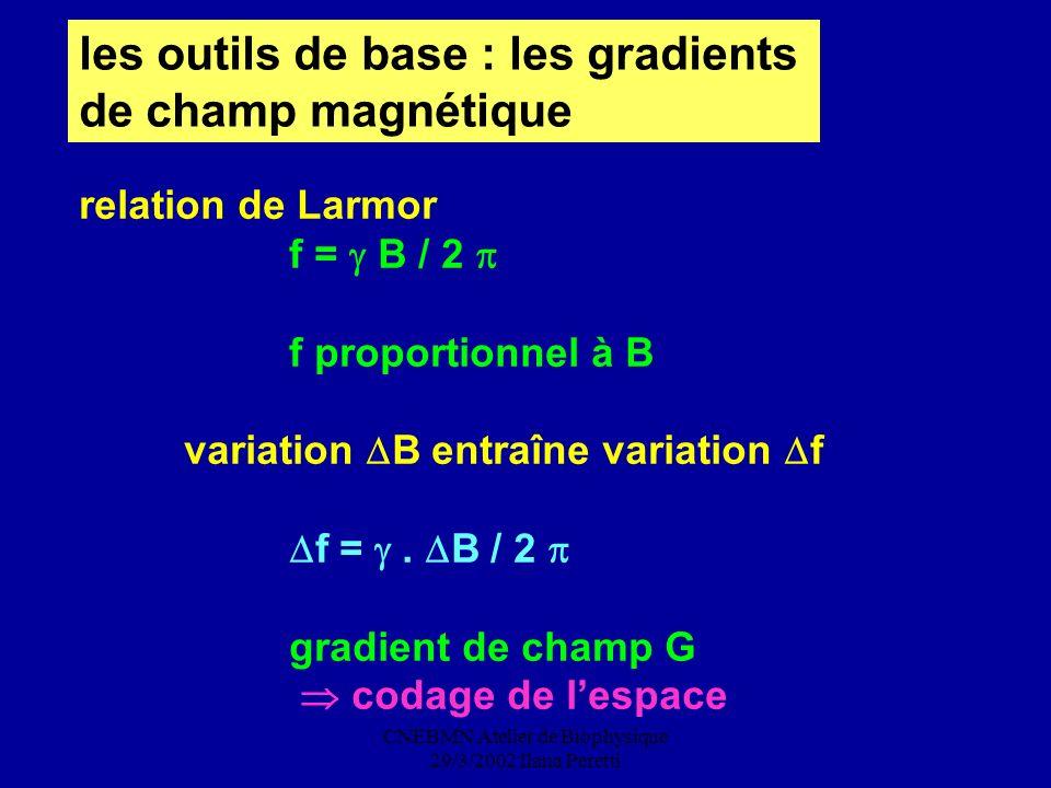 CNEBMN Atelier de Biophysique 29/3/2002 Ilana Peretti les outils de base : les gradients de champ magnétique relation de Larmor f = B / 2 f proportion