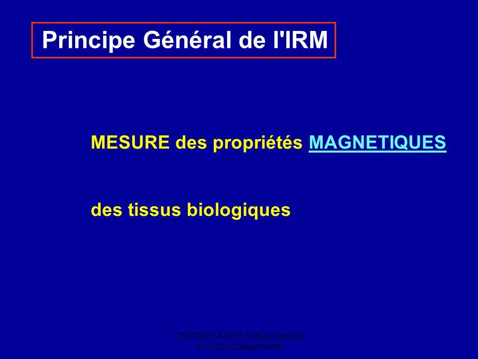 CNEBMN Atelier de Biophysique 29/3/2002 Ilana Peretti Principe Général de l'IRM MESURE des propriétés MAGNETIQUES des tissus biologiques