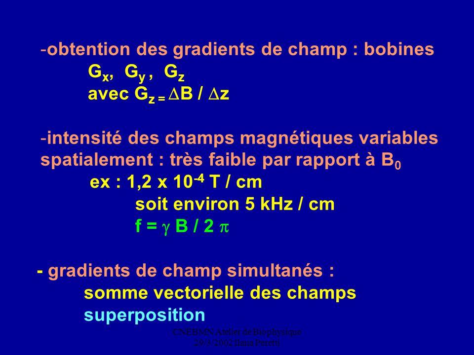 CNEBMN Atelier de Biophysique 29/3/2002 Ilana Peretti -obtention des gradients de champ : bobines G x, G y, G z avec G z = B / z -intensité des champs