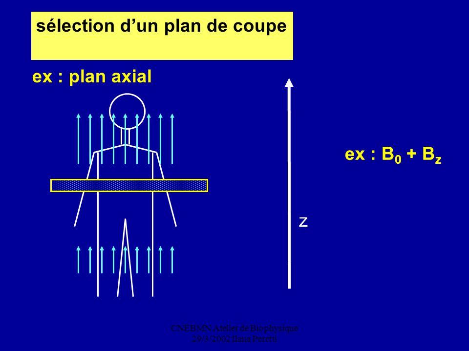 CNEBMN Atelier de Biophysique 29/3/2002 Ilana Peretti sélection dun plan de coupe z ex : B 0 + B z ex : plan axial