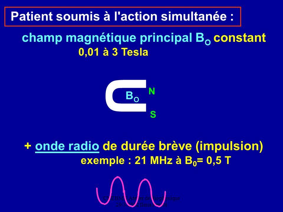CNEBMN Atelier de Biophysique 29/3/2002 Ilana Peretti Patient soumis à l'action simultanée : champ magnétique principal B O constant 0,01 à 3 Tesla +