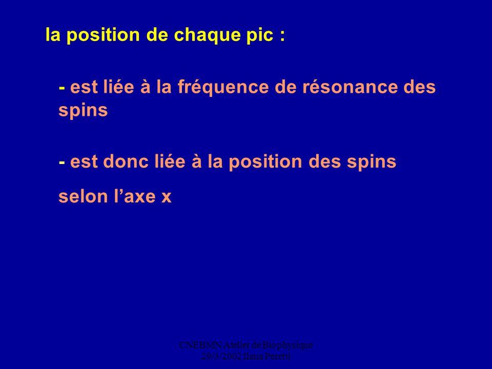CNEBMN Atelier de Biophysique 29/3/2002 Ilana Peretti la position de chaque pic : - est liée à la fréquence de résonance des spins - est donc liée à l