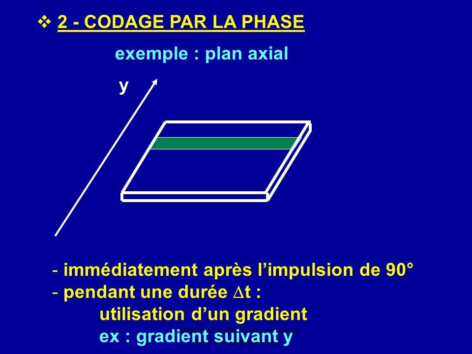 CNEBMN Atelier de Biophysique 29/3/2002 Ilana Peretti exemple : plan axial 2 - CODAGE PAR LA PHASE y - immédiatement après limpulsion de 90° - pendant