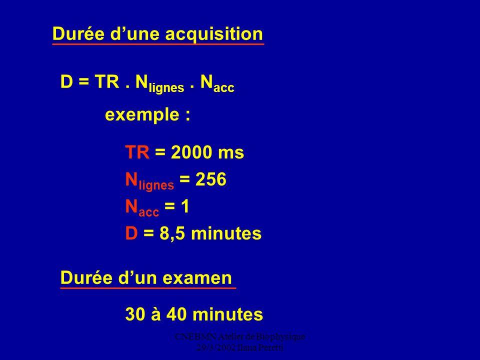 CNEBMN Atelier de Biophysique 29/3/2002 Ilana Peretti Durée dune acquisition D = TR. N lignes. N acc TR = 2000 ms N lignes = 256 N acc = 1 D = 8,5 min