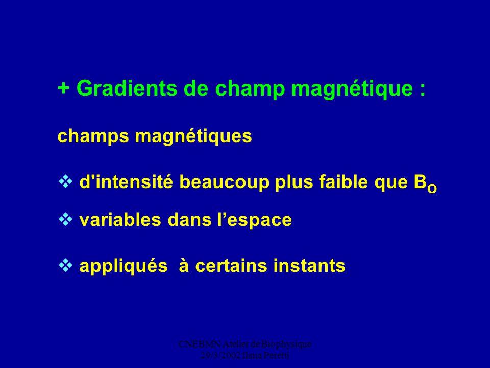 CNEBMN Atelier de Biophysique 29/3/2002 Ilana Peretti + Gradients de champ magnétique : champs magnétiques d'intensité beaucoup plus faible que B O va