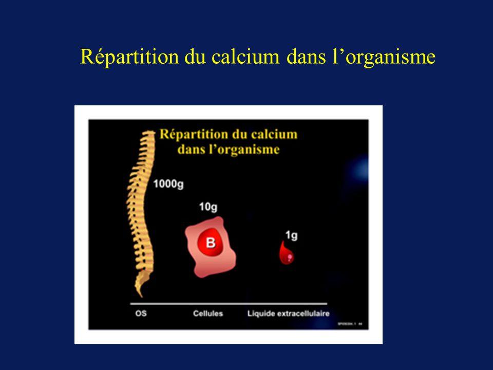 Répartition du calcium dans lorganisme