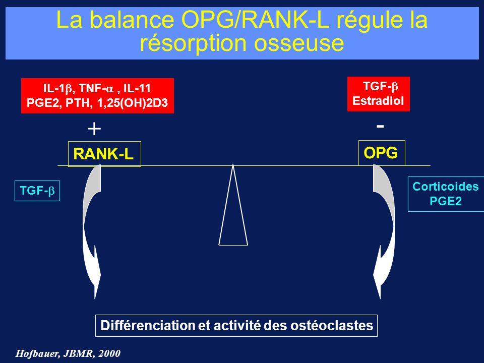 La balance OPG/RANK-L régule la résorption osseuse IL-1, TNF-, IL-11 PGE2, PTH, 1,25(OH)2D3 RANK-L OPG TGF- Estradiol TGF- Corticoides PGE2 Différenci