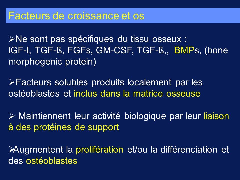 Facteurs de croissance et os Ne sont pas spécifiques du tissu osseux : IGF-I, TGF-ß, FGFs, GM-CSF, TGF-ß,, BMPs, (bone morphogenic protein) Facteurs s