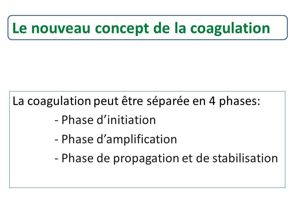 La coagulation peut être séparée en 4 phases: - Phase dinitiation - Phase damplification - Phase de propagation et de stabilisation Le nouveau concept de la coagulation