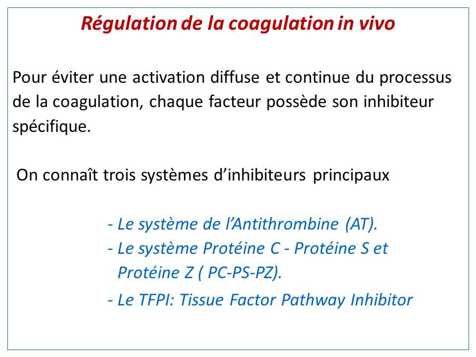 Régulation de la coagulation in vivo Pour éviter une activation diffuse et continue du processus de la coagulation, chaque facteur possède son inhibiteur spécifique.