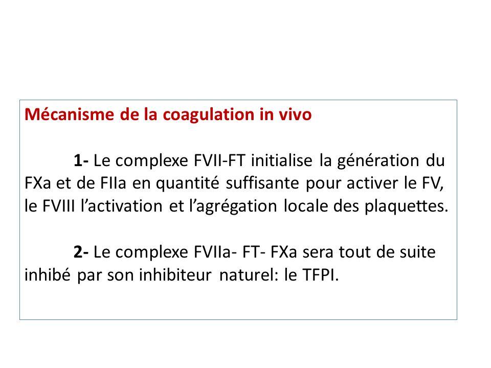 Mécanisme de la coagulation in vivo 1- Le complexe FVII-FT initialise la génération du FXa et de FIIa en quantité suffisante pour activer le FV, le FVIII lactivation et lagrégation locale des plaquettes.