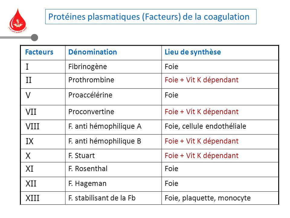 Lieu de synthèseDénomination Facteurs FoieFibrinogène I Foie + Vit K dépendantProthrombine II FoieProaccélérine V Foie + Vit K dépendantProconvertine