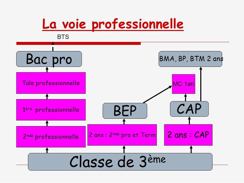 La voie professionnelle Classe de 3 ème 2 ans : 2 nde pro et Term BEP 2 ans : CAP CAP Bac pro BMA, BP, BTM 2 ans BTS MC 1an 2 nde professionnelle 1 èr
