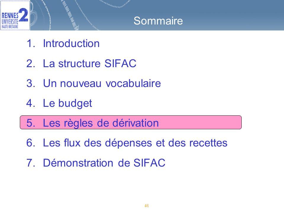 46 Sommaire 1.Introduction 2.La structure SIFAC 3.Un nouveau vocabulaire 4.Le budget 5.Les règles de dérivation 6.Les flux des dépenses et des recettes 7.Démonstration de SIFAC